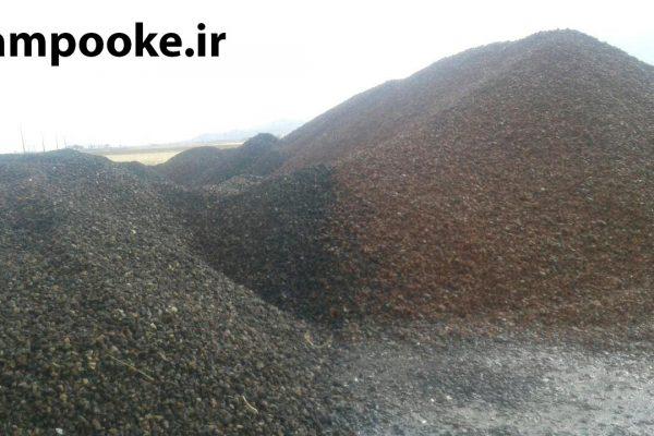 photo 2019 01 15 22 52 43 600x400 پوکه معدنی به انگلیسی