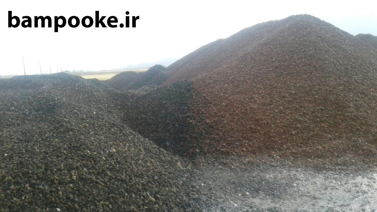 photo 2019 01 15 22 52 43 پوکه معدنی به انگلیسی