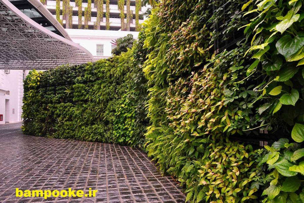 دیوار سبز خارج از خانه 1030x687 دیوار سبز