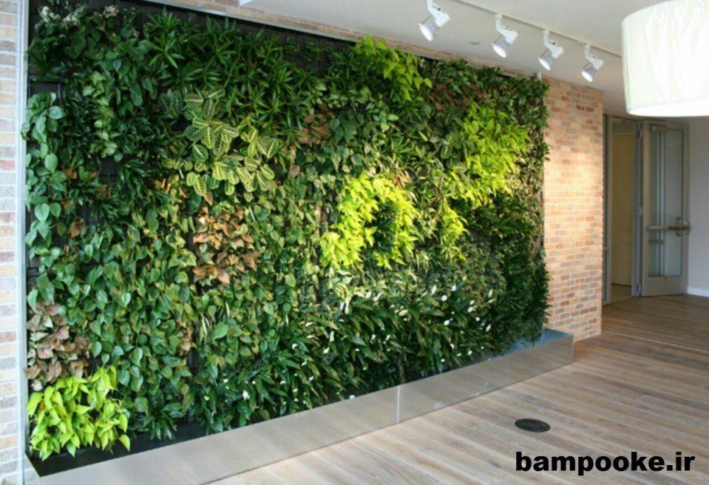 نگهداری از گیاهان در دیوار سبز 1030x705 دیوار سبز